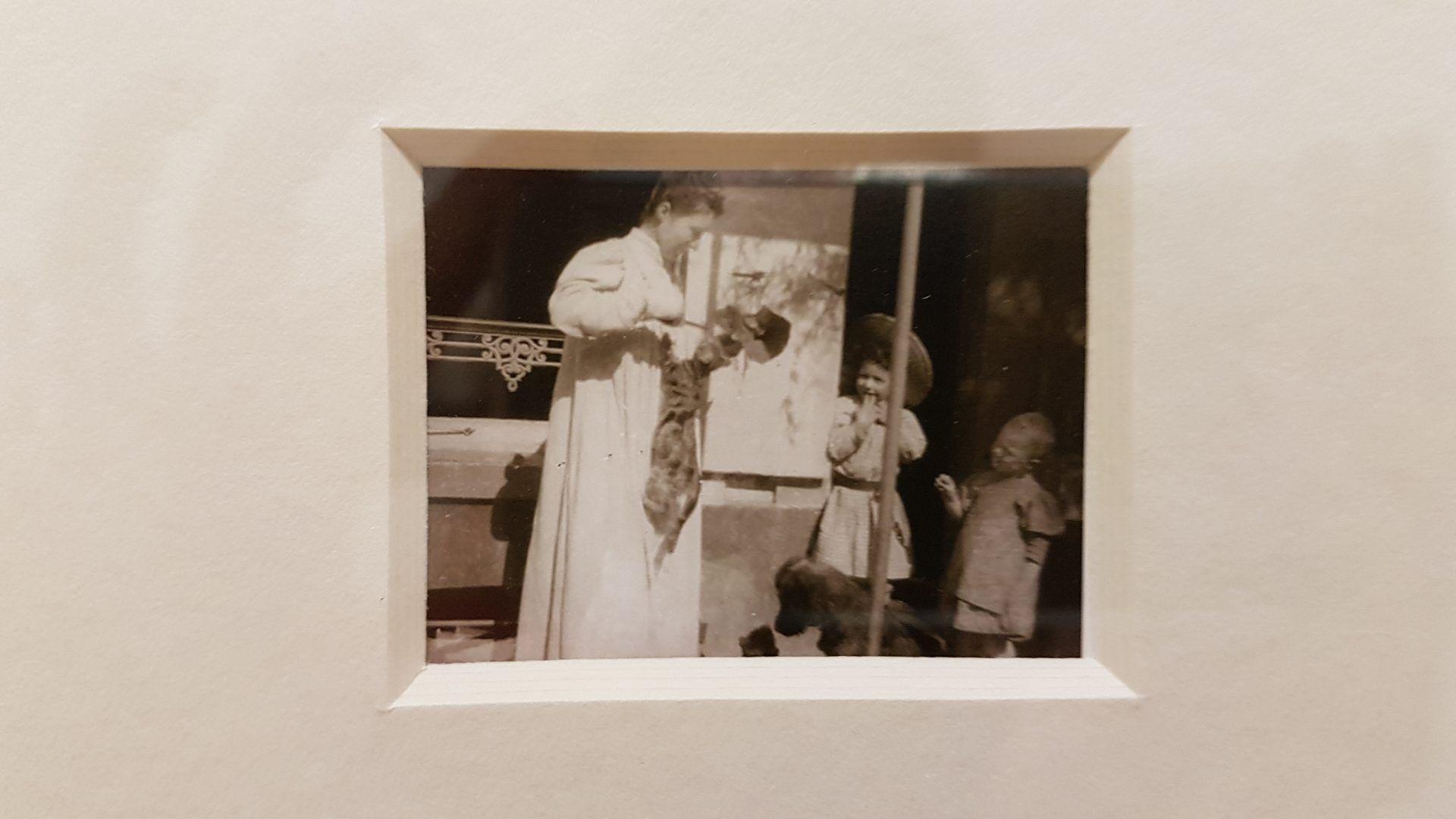 Фотография в экспозиции выставки Пьера Боннара в Кунстфоруме Форума Австрия. Фото Юлии Абрамовой, 2019