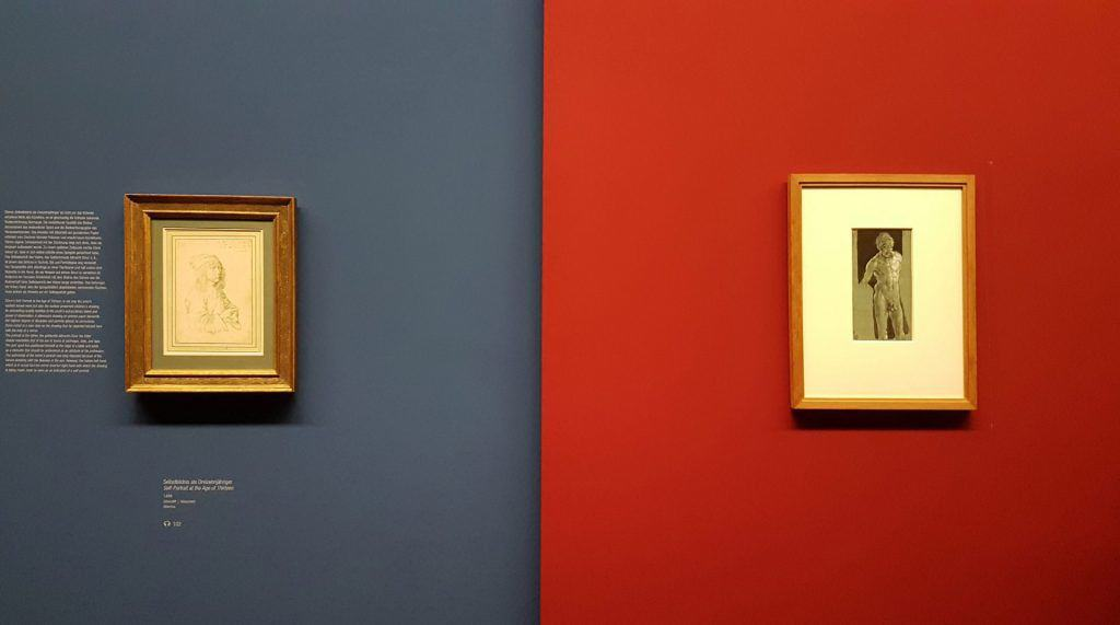 Два автопортрета Альбрехта Дюрера в экспозиции выставки в Альбертине в Вене. Фото Art with me! e.U., 2019
